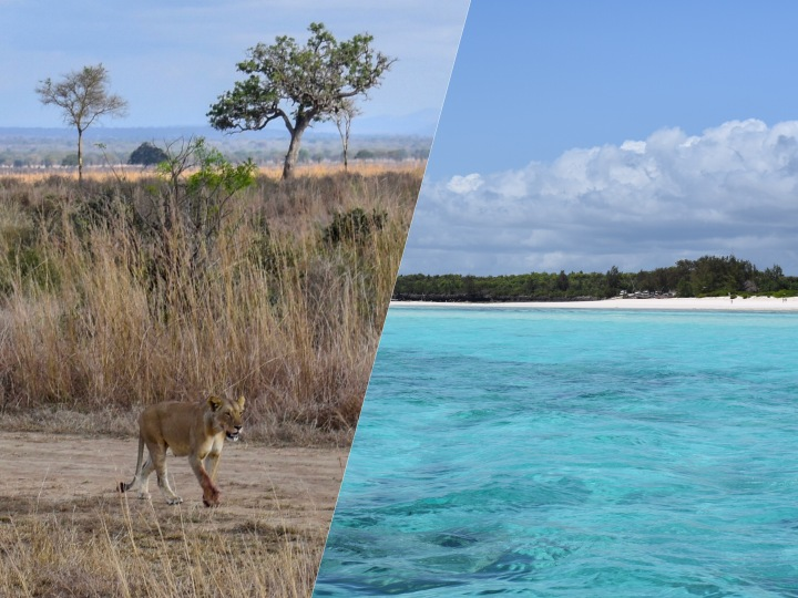 Roteiro Tanzânia: Safaris e ilha deZanzibar